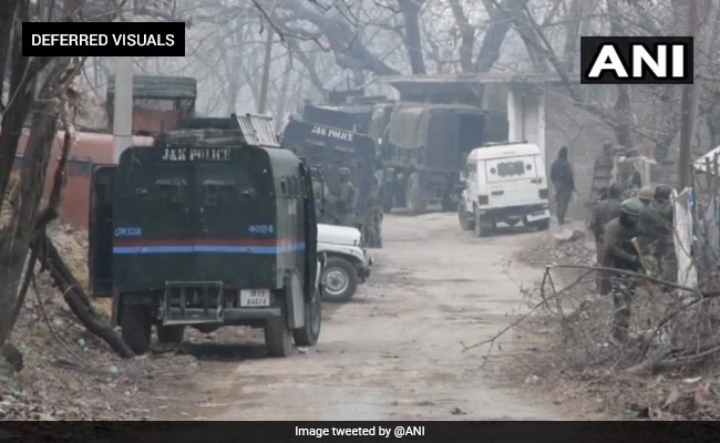 Terrorist Shot Dead In Encounter In Jammu and Kashmir's Pulwama