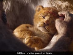 <i>The Lion King</i> Remake's 'Live Action' Trailer Has The Internet A Little Confused