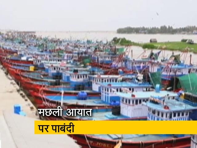 Videos : कर्नाटक-गोवा के बीच मछली विवाद