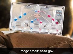 NASA To Send Tissue Chips To Space To Test Human Health, Genetic Changes
