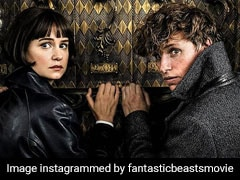 As <I>Fantastic Beasts: The Crimes Of Grindelwald</I> Releases, Eddie Redmayne Wonders If He'll Be 'Employed Again'