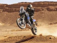 Yamaha Tenere 700 Adventure May Be Introduced Globally