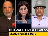 Video : Was The Killing Of Tigress Avni Justified?