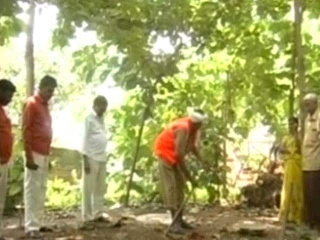Video : Telangana's Gangadevipalli Is India's Greenest Village