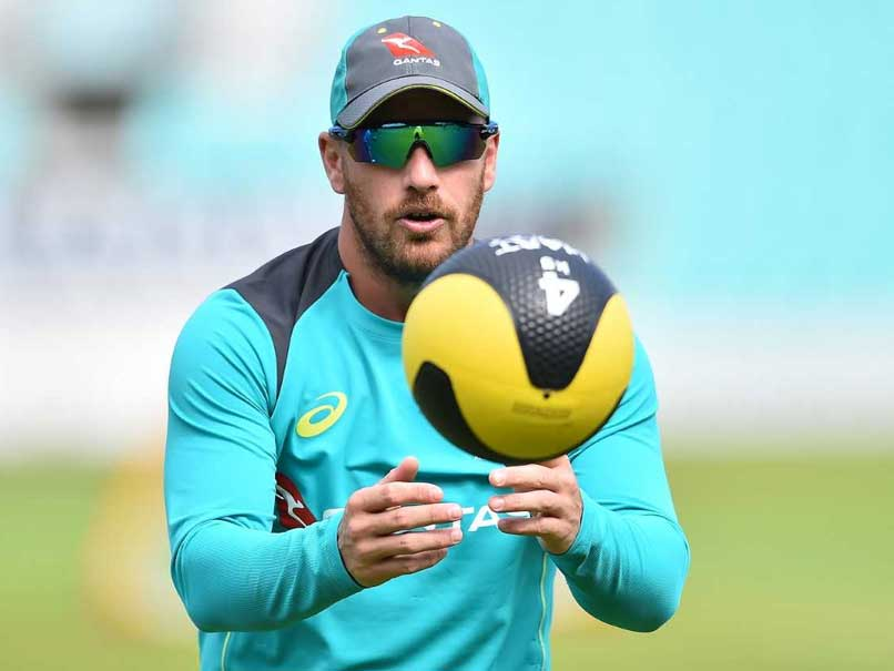 Aaron Finch Deserves To Open Against India In Tests, Says Tim Paine