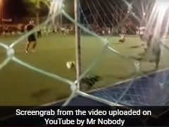 Watch: A Dog's Incredible Penalty Save During A Football Match