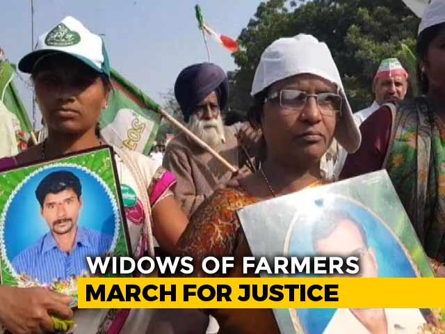 Video : Holding Photographs Of Husbands, Widows Of Farmers Protest In Delhi