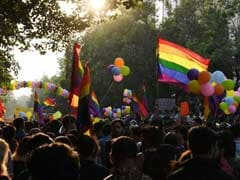 "LGBT Community Chants ""We Got Freedom"", Marches Freely In Delhi"