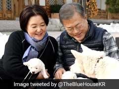 Doggy Diplomacy: South Korea President Snuggles With Kim Jong's Pups