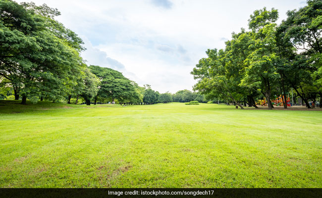 Passive Exposure To Greenery Can Reduce Cravings For Junk Food, Alcohol And Cigarettes: Study