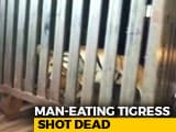 "Video : Maneka Gandhi Slams Maharashtra For ""Brutal Murder"" Of Tigress Avni"
