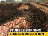 Video: Air Pollution Emergency In The Capital