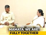 Video : On Face Of <i>Mahagathbandhan</i>, Mamata Banerjee's Evasive Response
