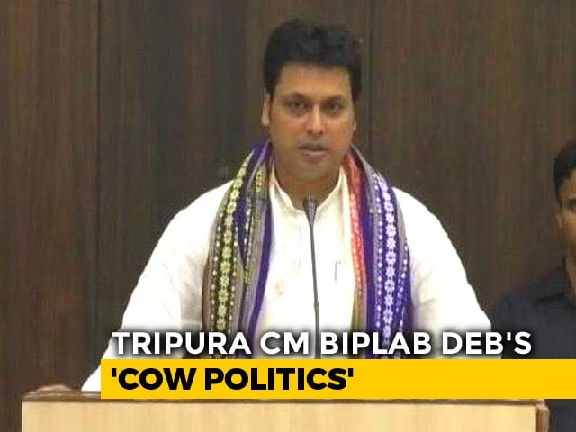 Video : Biplab Deb's Latest Home-Grown Idea Has Cows, Milk And Income