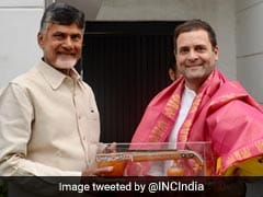 "Chandrababu Naidu Meets Rahul Gandhi, Says Unity ""Democratic Compulsion"""