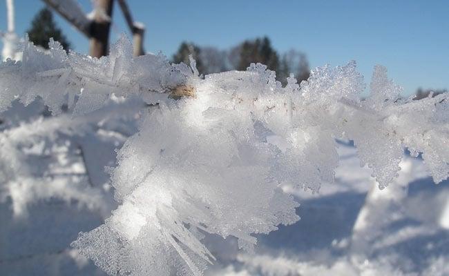 मौसम का बिगड़ता मिजाज:कई राज्यों में बढ़ा ठंड का प्रकोप,दिल्ली में टूटा सर्दी का रिकॉर्ड