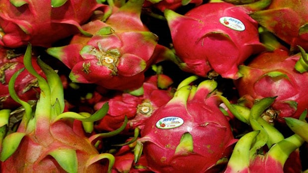 Dragon Fruit: Bollywood Reactions Gujarat Government Renames Dragon Fruit To Kamalam, See Comments