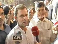 NDTV Exclusive: चंद्रबाबू संग गठबंधन पर बोले राहुल गांधी: हमारी केमिस्ट्री अच्छी, साथ काम करने में मजा आ रहा है