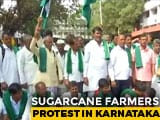 Video: Farmers Protest In Karnataka Over Support Price Of Sugarcane