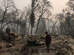 In Paradise Destroyed By Wildfires, One Man's Tireless Search For Brother