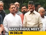 Video : Have To Defend Democracy, Says Rahul Gandhi After Meeting Chandrababu Naidu