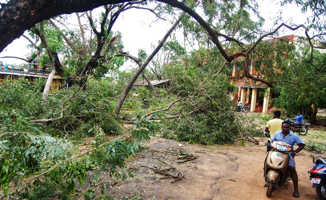 Cyclone Gaja kills 33 in India with thousands in relief camps