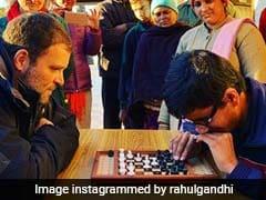 PHOTOS: तीन राज्यों में जीत के बाद राहुल गांधी छुट्टियां मनाने पहुंचे शिमला, बच्चों के साथ खेला चेस तो ढाबे पर खाई मैगी