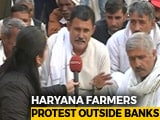 Video : What Farmers Want In Haryana