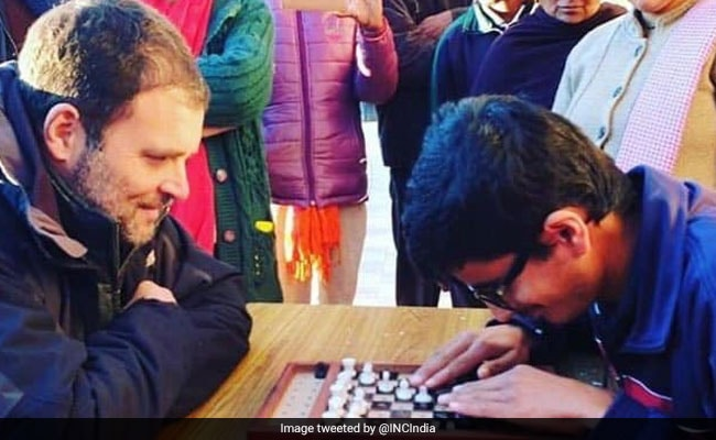 Rahul Gandhi's Shimla Break: Maggi, Chess And Visit To A Special School