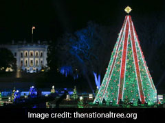Donations Save National Christmas Tree From Darkness Amid US Shutdown