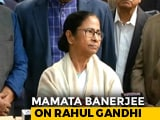 Video : On MK Stalin's Rahul-For-PM Comment, Mamata Banerjee's Response