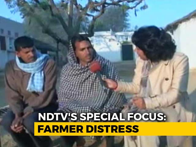 Video : Despite Loan Waivers, Rajasthan Farmers Fail To Escape Debt Trap