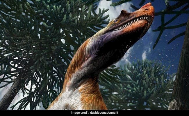 Dinosaur That Existed In Italy 198 Million Years Ago Was Given Sea Burial
