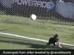 फुटबॉल मैच के बीच आया कुत्ता, ग्राउंड पर आकर ऐसे बचाया गोल, देखें मजेदार VIDEO
