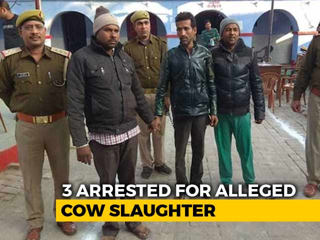 Video : 3 Arrested In Bulandshahr For Cow Slaughter, Cop's Killers Still Missing