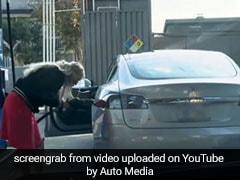 Electric कार लेकर पेट्रोल पंप पहुंच गई महिला, टैंक ढूंढने के लिए किया ऐसा, देखें VIDEO