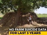 Video : Centre Has No Farmer Suicide Data Since 2016, Minister Told Parliament