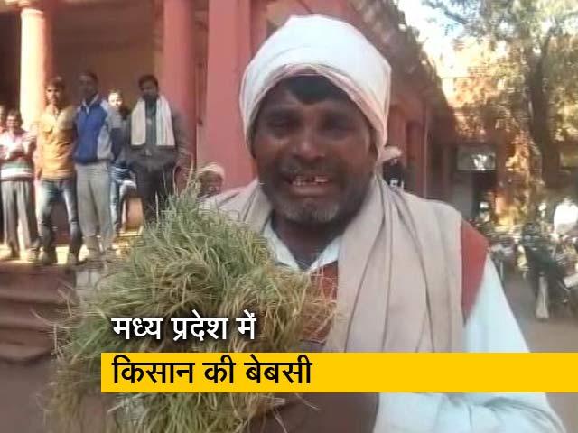 Videos : बिजली कनेक्शन नहीं मिला, तो DM के पैरों में गिरकर फफक-फफक कर रोने लगा किसान