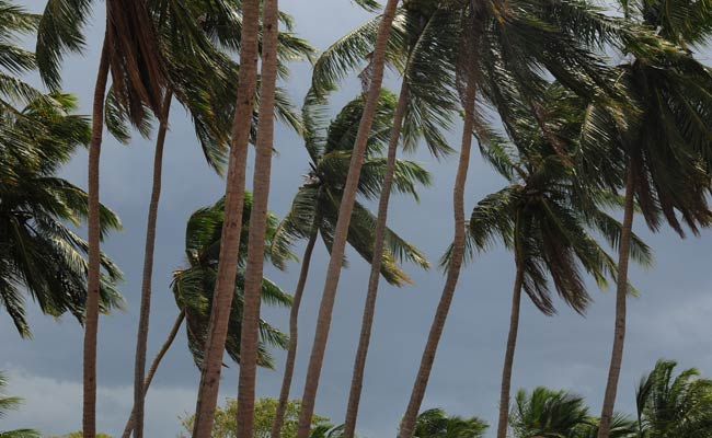 Pre-Cyclone Watch Issued For Andhra Pradesh Coast