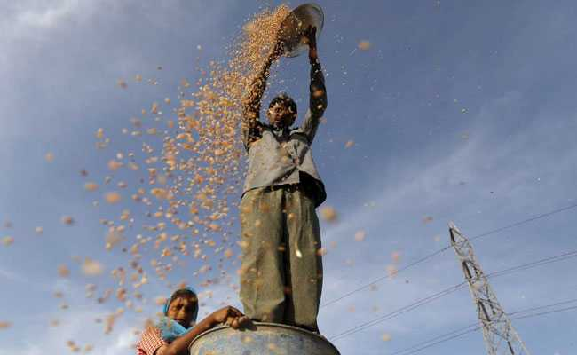 Karnataka Approves Amendment In Law To Allow Direct Sales By Farmers