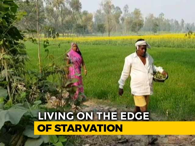 Video : 24 Hours With A Farmer: A Story Of Distress