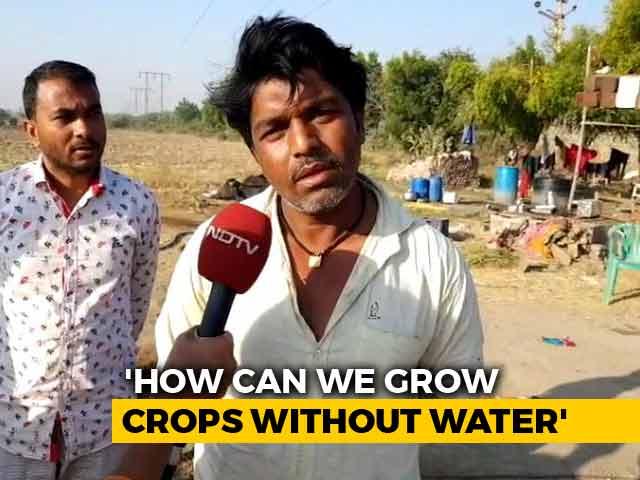 Video : Farmers In Gujarat Hit By Water Crisis