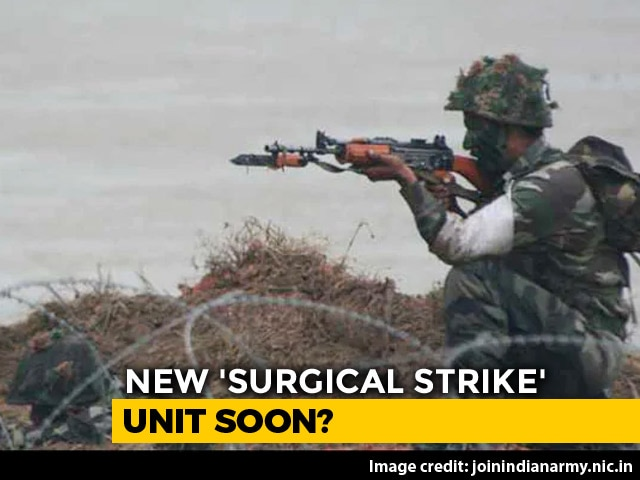 "Video : A ""Surgical Strike"" Unit To Fight Behind Enemy Lines: Government Sources"