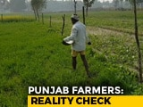 Video : Punjab Farmers Talk To NDTV On Farm Loan Waivers