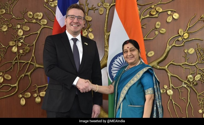 Sushma Swaraj Meets Iceland's Foreign Minister, Holds Bilateral Talks