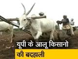 Video : Ground Report: .यूपी के आलू किसान क्यों हैं मायूस ?