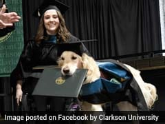 Very Good Service Dog Awarded Honorary Diploma With His Human