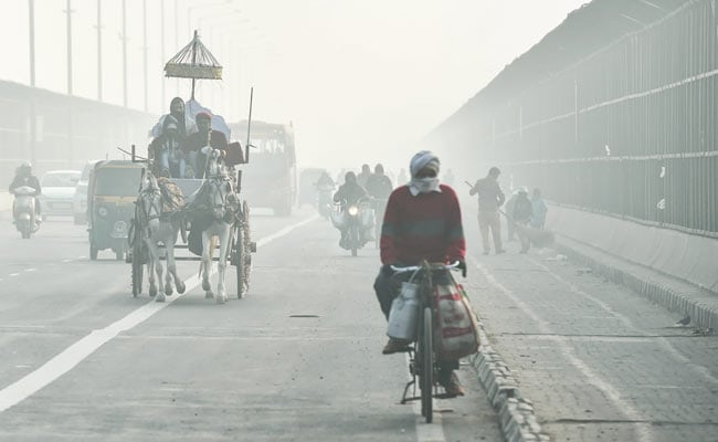 Cold Morning In Delhi; Temperature Settles At 8 Degrees