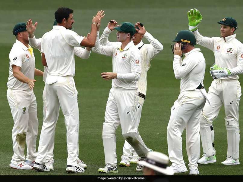 Tim Paine Criticises Mitchell Starc, Reveals Reasons For Australias Adelaide Test Loss