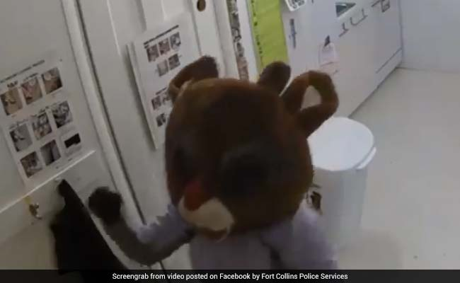 Woman Dons Rudolph The Red-Nosed Reindeer Costume During Burglary